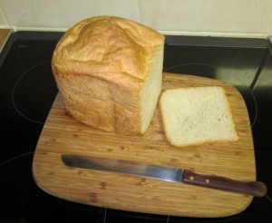 Fresh Bread from   morphy richards 48322